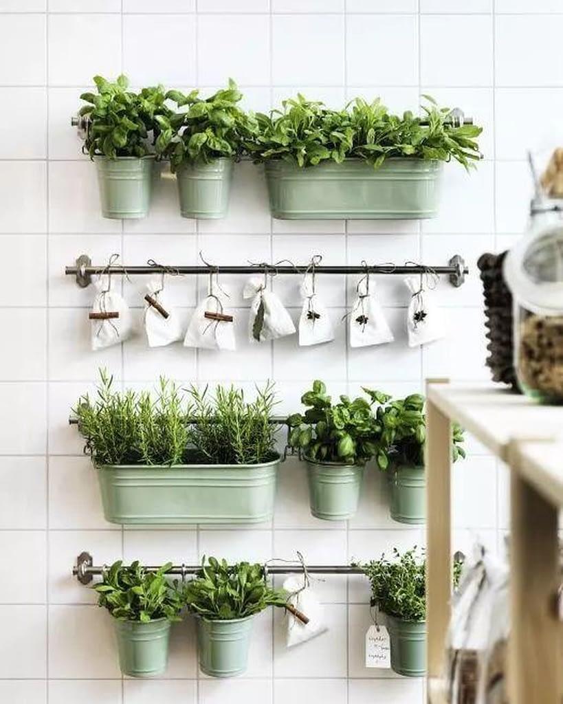 огород на кухне на стене, фото