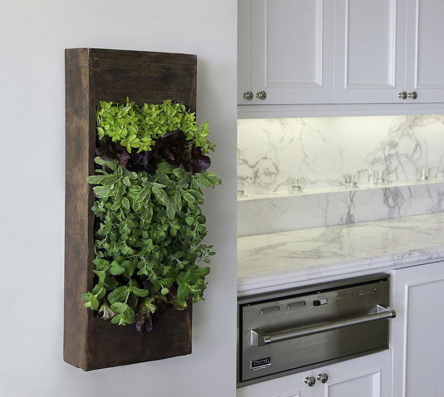 Дизайн маленькой кухни мини-огород